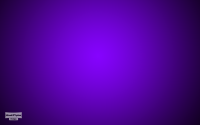 Color purple wallpaper
